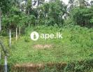 Mathugama agalawaththa road aland for sale