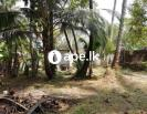 Land for sale in heart of Anuradhapura
