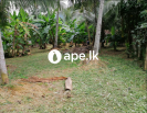 Land for sale in Kandalama - Mirigama.